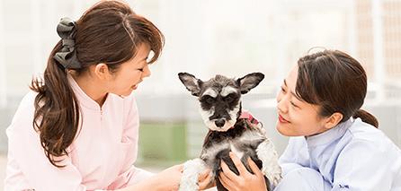動物看護師の仕事紹介・飼育動物紹介