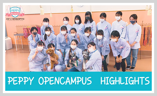 PEPPY OPENCAMPUS HIGHLIGHTS