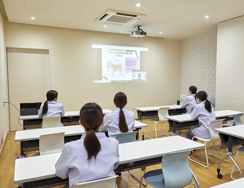 遠隔授業システムの構築