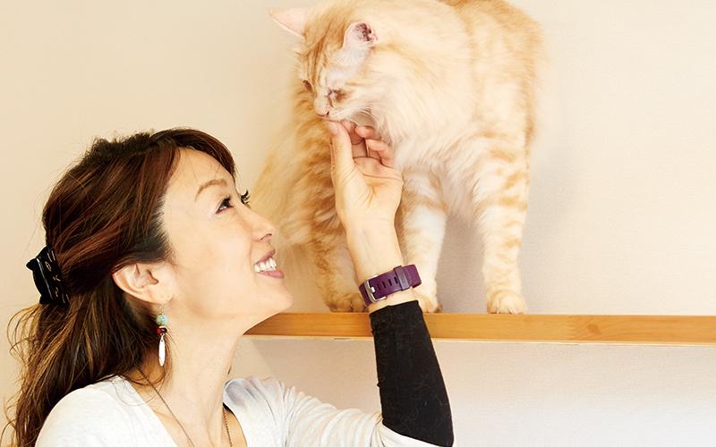 木村 知可子さんの写真