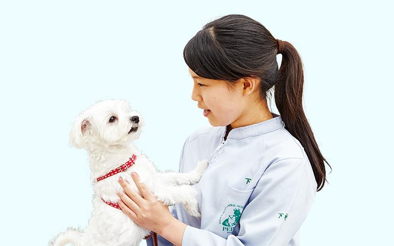 下村 菜々美さんの写真