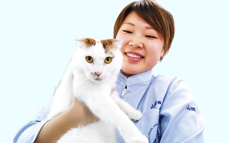 山田 睦さんの写真