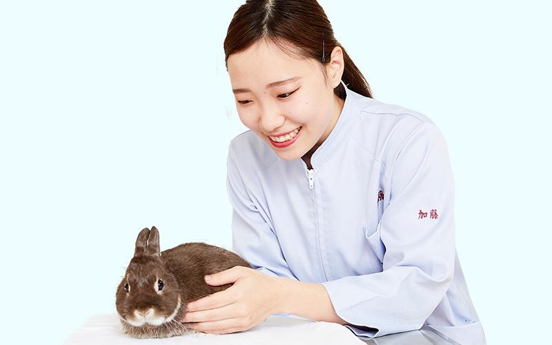 加藤 優依さんの写真
