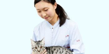 上野 美由起さんの写真