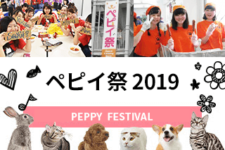 ペピイ祭2019